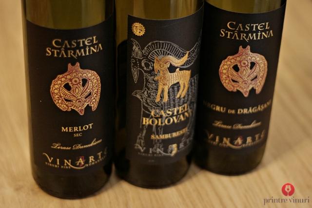 merlot-negru-cabernet-vinarte-2009