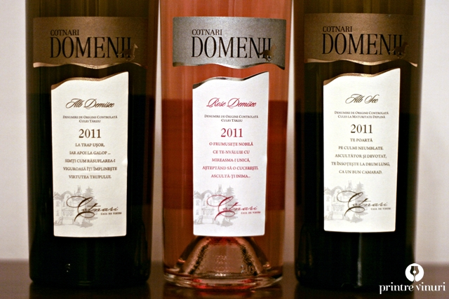 Gama Domenii Cotnari 2011, Casa de vinuri Cotnari