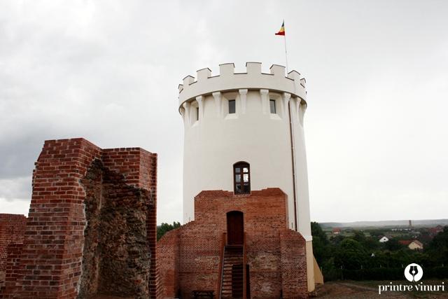 cetatea-ardud-turn-21