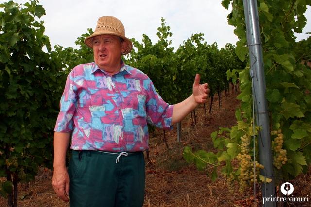 turulung-vii-viticultor
