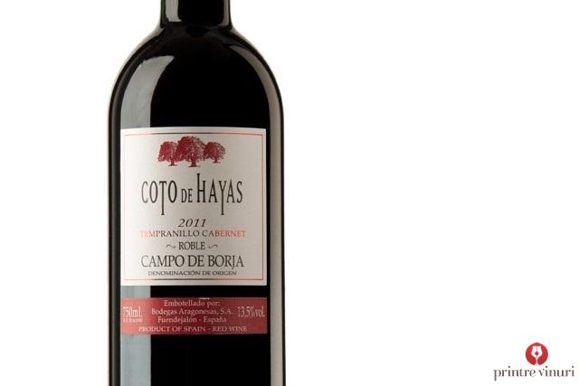 coto-de-hayas-tempranillo-cabernet-2011-bodegas-aragonesas