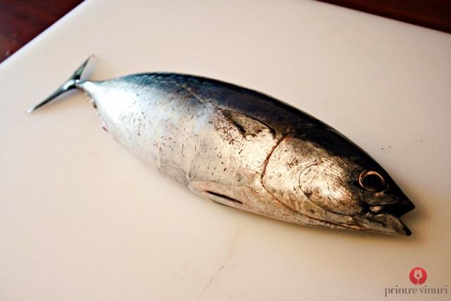 fresh-tuna