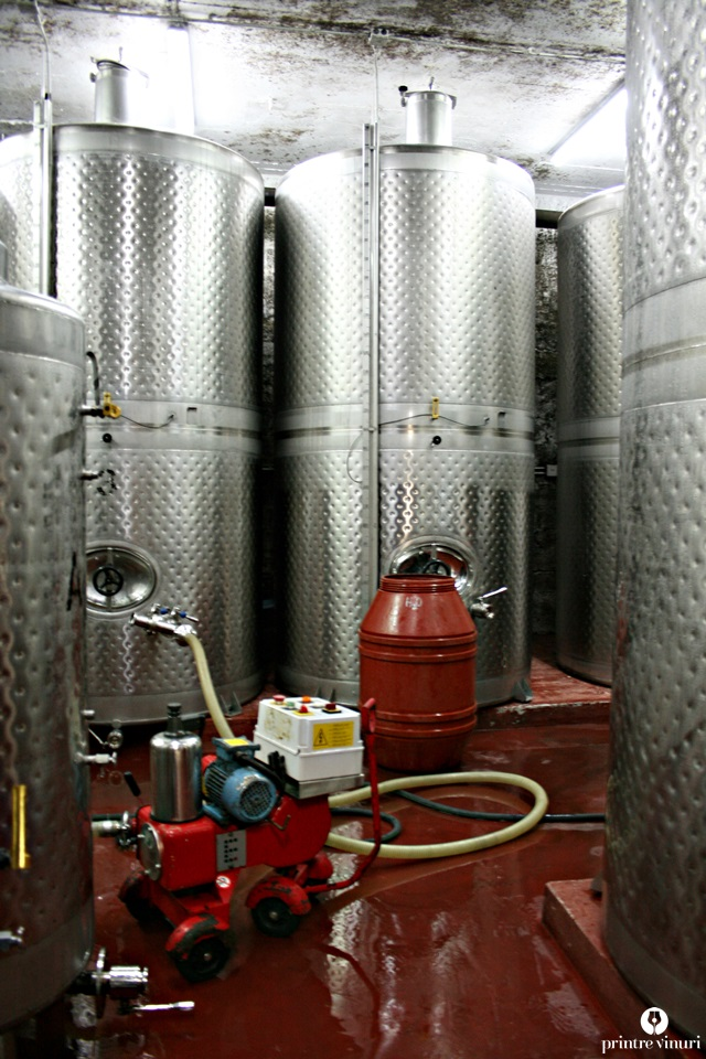 gentilini-winery-steel-tanks
