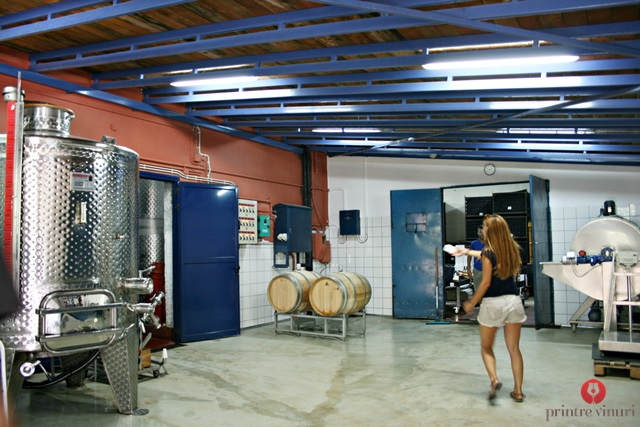 inside-gentilini-winery