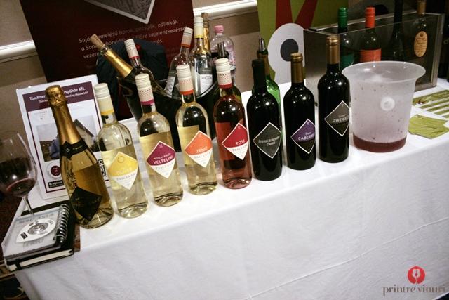 taschner-wines-sopron-hungary