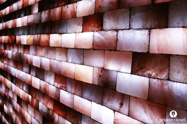 mineralia-salt-wall