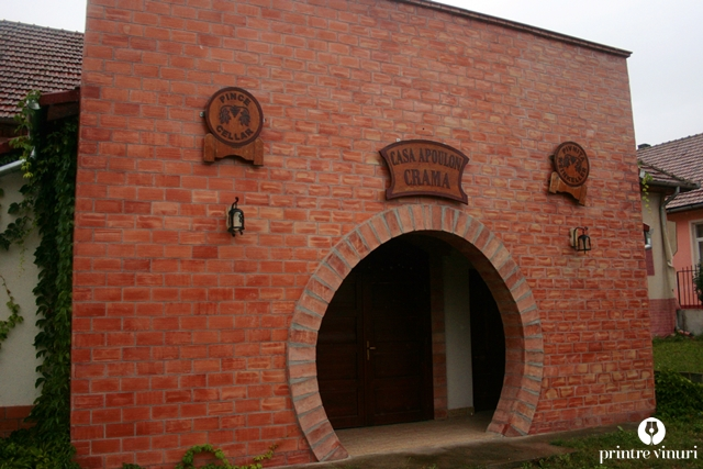 #WinesofTransylvania ziua 3 – Crama Casa Apoulon, Crama Telna