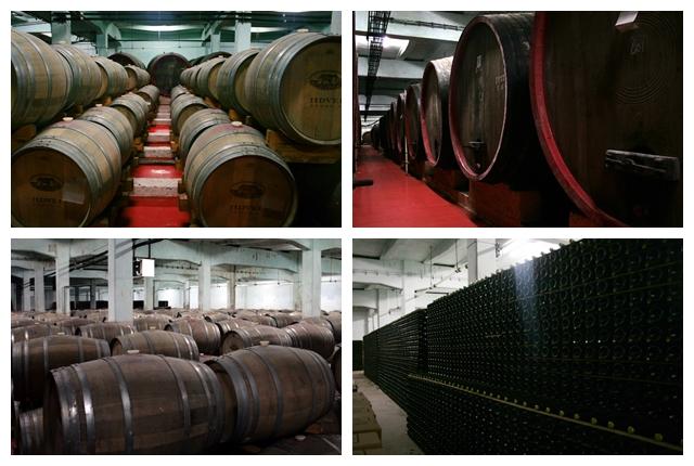 inside-jidvei-winery