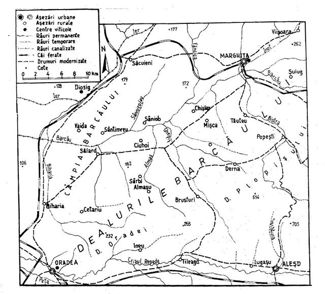 Cum aratau viile din Bihor in urma cu 40 de ani