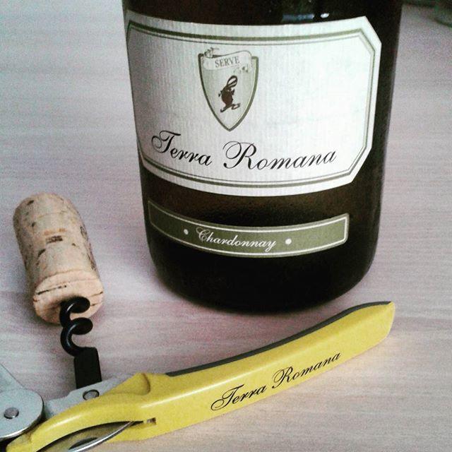 Chardonnay Terra Romana 2014, SERVE